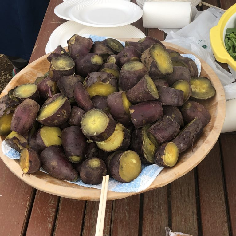 シェア畑主催の秋の収穫祭に行ってきました!