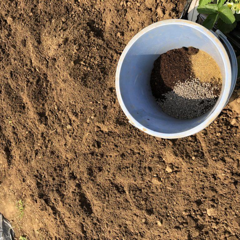 中玉トマト(シンディスウィート)0週目。肥料をまいて土づくり。